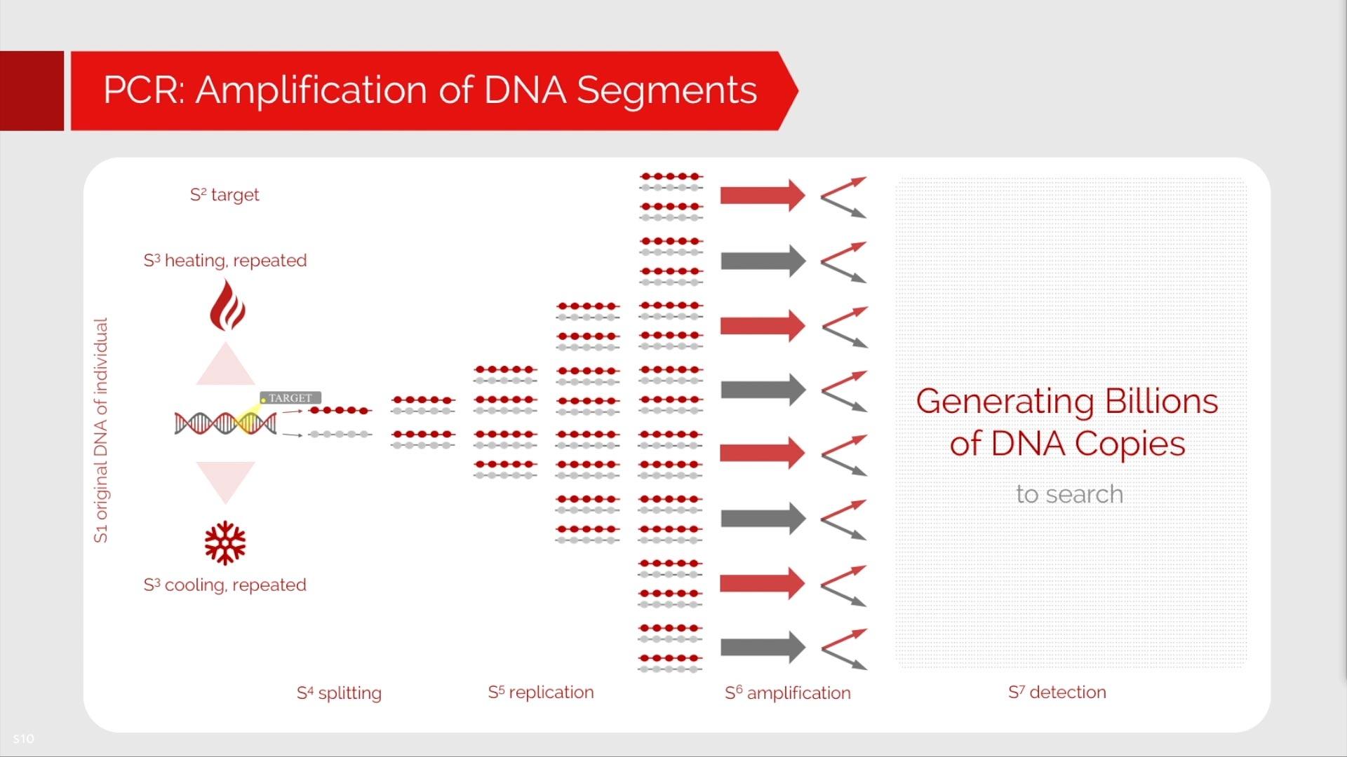 What is PCR? | Co-Diagnostics, Inc